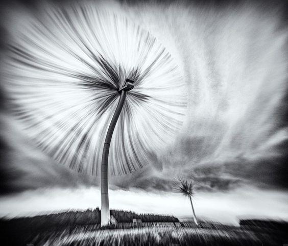snee_wind-farm